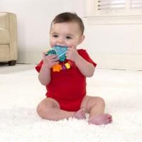ของเล่นเขย่า Baby Einstein เต่าน้อย (BPA Free)