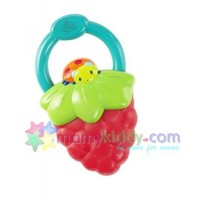 ยางกัดแบบสั่น Bright Starts - Berry (BPA Free)